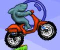 Shark Moto hra online