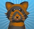 Péče o domácího mazlíčka hra online