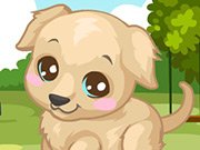 Pejsek labrador hra online