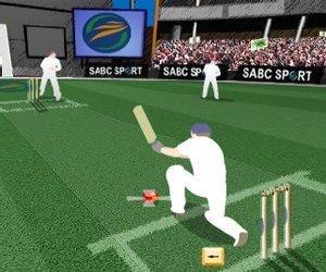 Kriket hra online