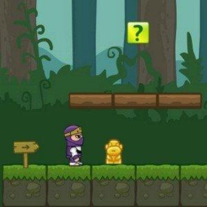 Ninja v nefér světě hra online